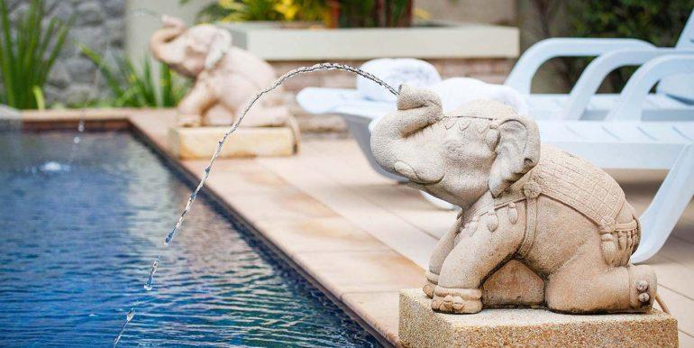 Pool-Elephants